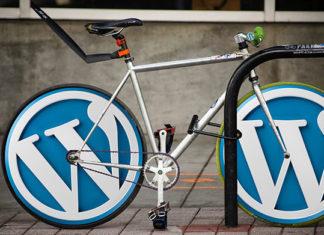 Masz stronę w WordPress? Zleć modyfikacje i opiekę profesjonalnej agencji SEO